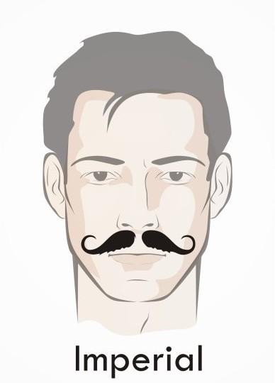 Imperial Beard Styles